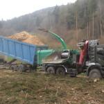 Biasi legno  lavorazione cippato
